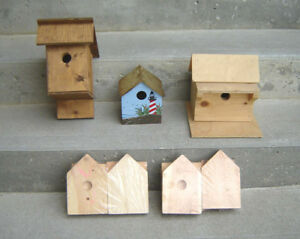 NEW Birdhouses and Kids Birdhouse Building Kits