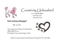 Creativity Unleashed  Dog and Cat Grooming