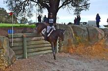 TIM ELLIS EVENTING CLINIC - THIS SUNDAY 5TH IN BALDIVIS Baldivis Rockingham Area Preview