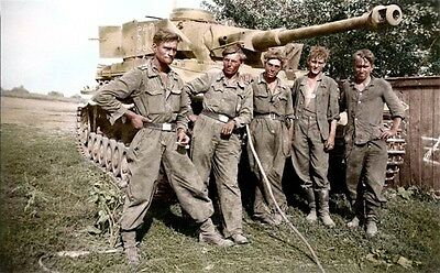 COLOR WWII WW2  Photo German Panzer Crew Kursk 1943  World War Two / 2219
