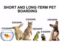 Short and Long-term pet boarding from as little as £10/24hrs