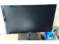 "Samsung 23.6"" monitor S24C550VL"