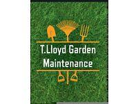 T.Lloyd Garden Maintenance - Local Gardening Service