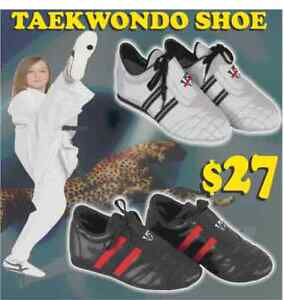 TAEKWONDO SHOE, ANY SIZE, 75% OFF (905) 364-0440 FIGHTPRO.CA