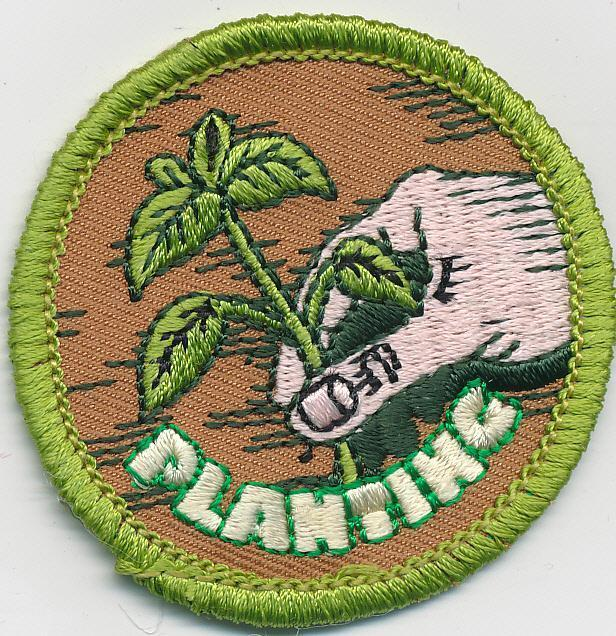 Girl Boy Cub seed gardening PLANTING crops Fun Patches Crests Badge SCOUTS GUIDE