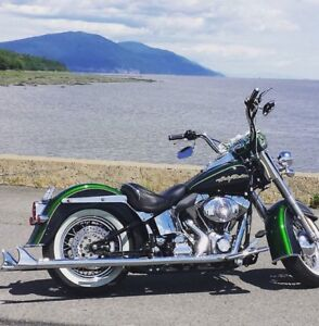 Dragonfly Softail Deluxe