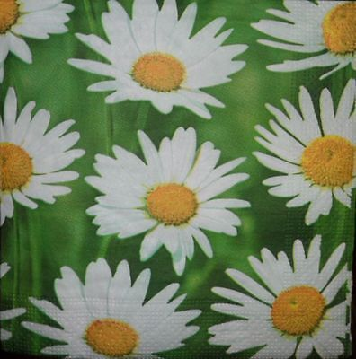 4 x Single Paper Napkins for Decoupage Crafting  Party Flowers Pattern 11