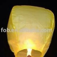 Chinese Sky Lanterns and wedding lanterns.
