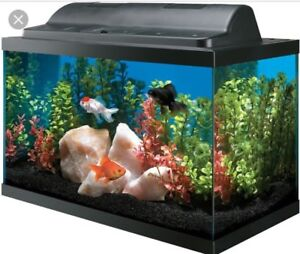 LOOKING FOR 20 GALLON FISH TANK