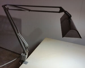 Articulating workbench fluorescent light fixture with character
