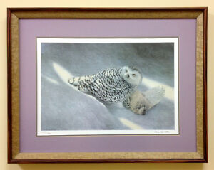 Signed STEVE McNORTON FRAMED LIMITED ED. PRINT 649/900 feat. OWL