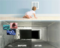 Air Duct And Carpet Cleaning 416-277-4616