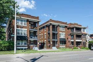 Stunning 1 bedroom apartment across from Gage Park