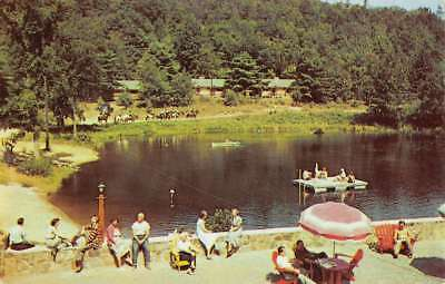 Lake Luzerne New York Painted Pony Ranch Waterf Vintage Postcard (Painted Pony Ranch)