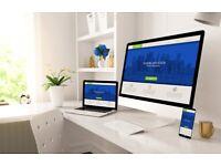 Hire a Professional Website Designer   Bespoke Web Design   eCommerce   WordPress   SEO