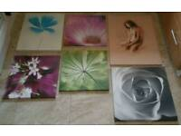 6 CANVASES