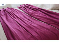 Purple/Magenta Curtains with Palazzo platinum buttons - 145cm x 205cm