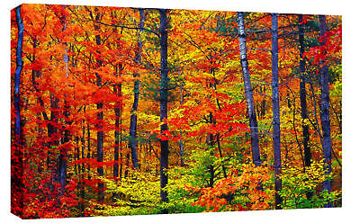 "LARGE AUTUMN FOREST PAINTING CANVAS ART PICTURE 34""x20"""