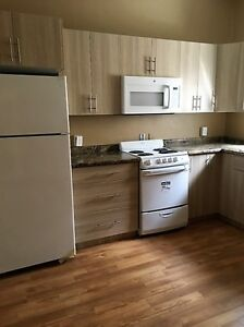 NOW AVAILABLE 2 bedroom MINNEDOSA apartment