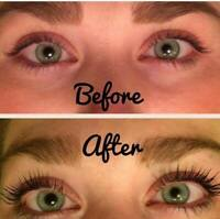 Lash Lift- Lash Tint ($ 50 North York)
