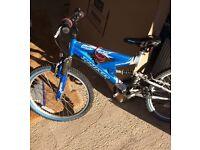Junior BMX Bikes