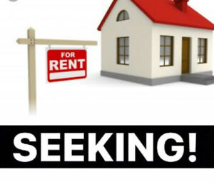 Looking for 3 Bedroom, Furnished ASAP in Saint John area