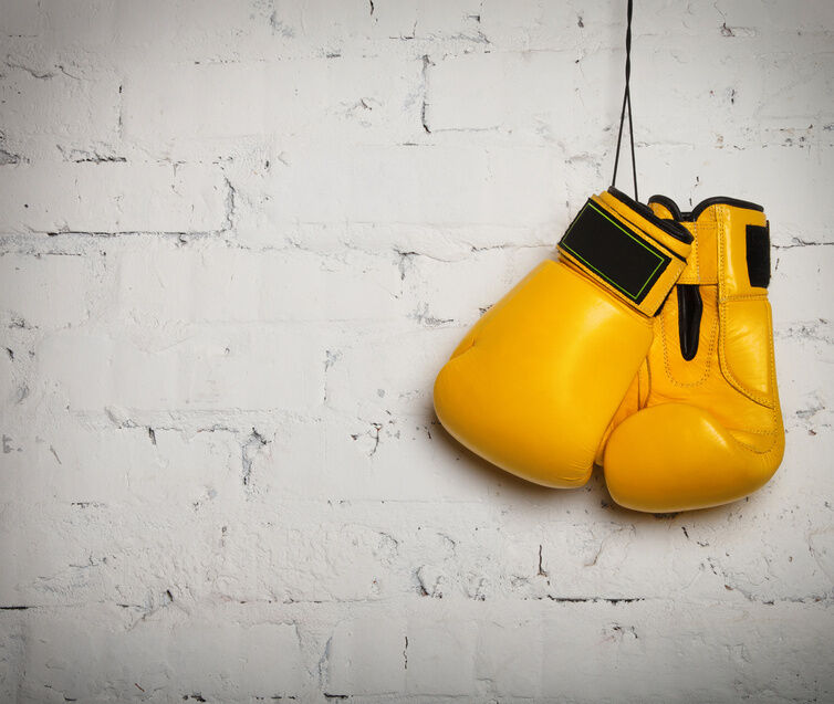 Everlast Boxing Gloves Buying Guide