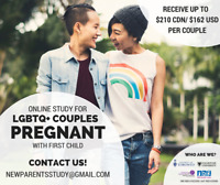 Pregnant LGBTQ+ couples needed for online research study ($210)