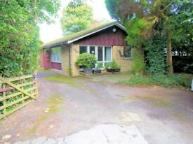 4 Bedroom Bungalow House for Rent Windsor SL4 Winkfield Road