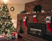 'Tis the season for holiday photos! Affordable!