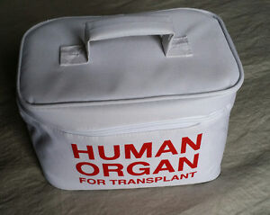 Human Organ Insulated Lunch Bag - NEW