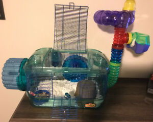 Two Fancy Mice with cage and accessories
