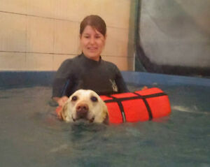 Canine Hydrotherapy at Pet-D-Gree Cambridge Kitchener Area image 3