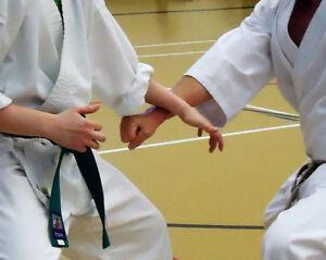 Non-Competative Karate - Shotokai Style