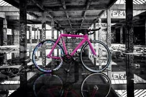 Velo Guru single speed fixed gear/pignon fixe