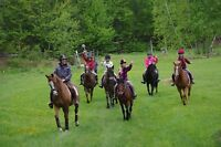 Riding Lessons and Trail Riding