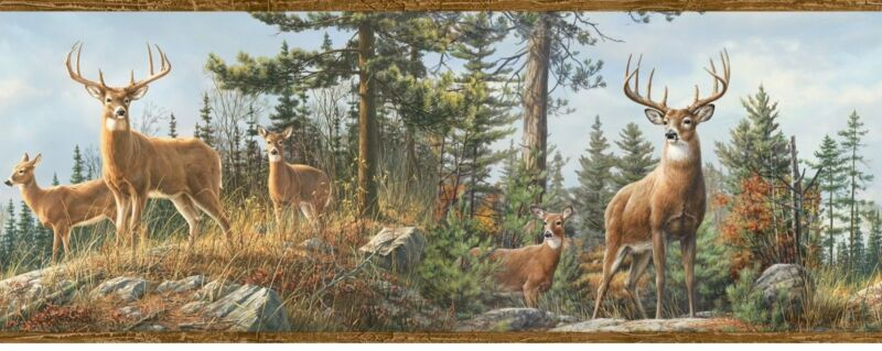 Deer on Top of Mountain with Blue Sky Easy Walls Wallpaper Border HTM48463B