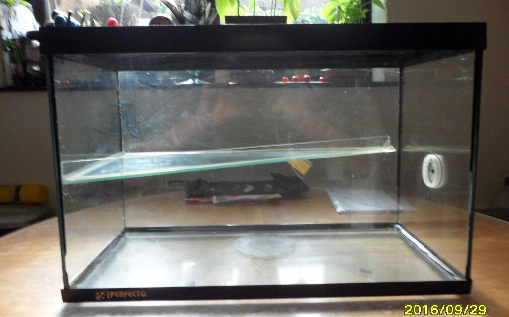 Glass gerbilarium in caerphilly gumtree for Cat proof fish tank