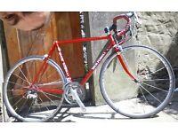 "Rick Powell handbuilt frameset 21.5"" COLUMBUS SL tubing road bicycle"