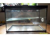 glass gerbil tank