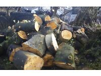Logs logs and logs