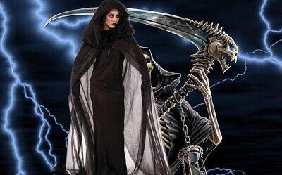 Hexe Kostüme böse Zauberin Damen Karneval Fasching Halloween - Böse Karneval Kostüme