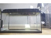 2ft fish/aquarium tank complete with hood cover and lighting.