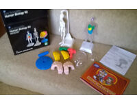 Human biology kit and microscope for kids