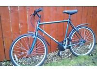 MENS DIAMONDBACK MTB + MUDGUARDS, LIGHTS & LOCK/2 KEYS **FREE DELIVERY HULL**