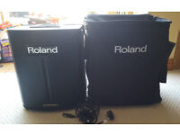 Roland BA330 Portable PA System and Travel Case - Mains & Battery Powered Amplifier