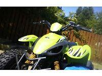 Adult quad bike qcr