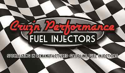 Cruz'n Performance Fuel Injectors