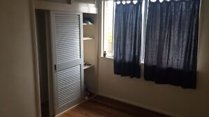 Large room for rent Cannon Hill Brisbane South East Preview