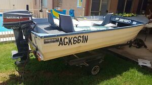 Trimcraft 3.5m tinnie with trailer Quakers Hill Blacktown Area Preview